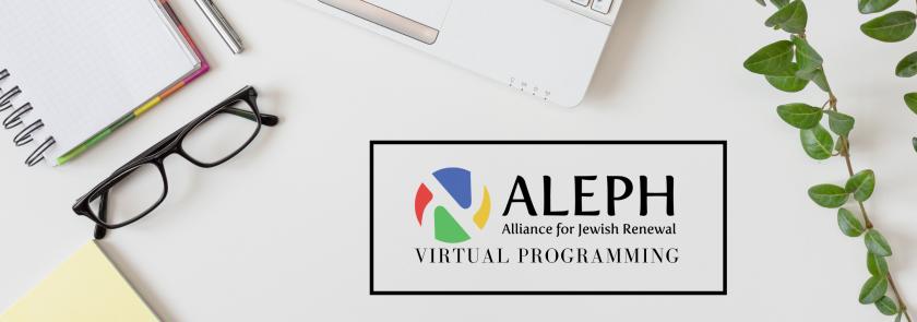 ALEPH Virtual Programs