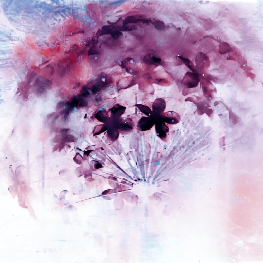 Purple flowers in globe
